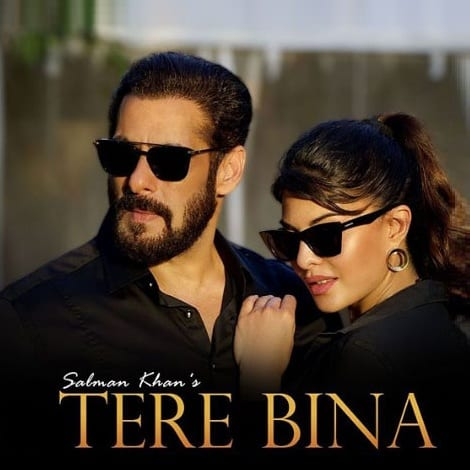 Salman Khan Tere Bina Ringtones Download