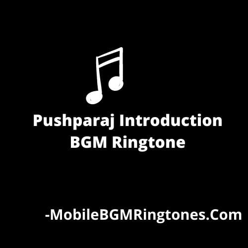 Pushparaj Introduction BGM Ringtone [Download] 2021